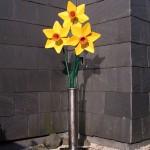steel daffodils